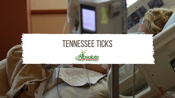 Tennessee Ticks