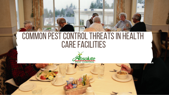 COMMON PEST CONTROL THREATS IN HEALTHCARE FACILITIES