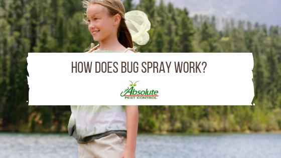 How Does Bug Spray Work?