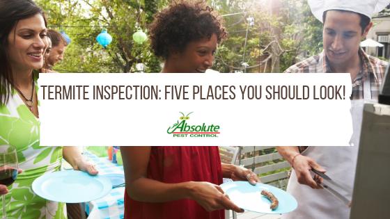 Termite Inspection: Five Places You Should Look!