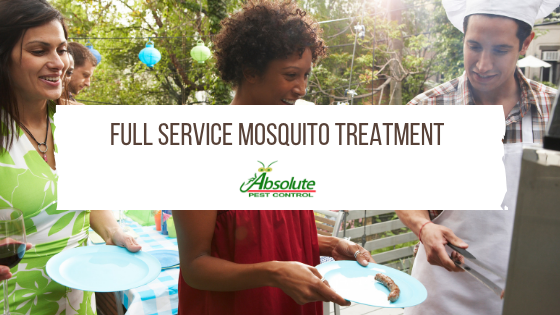 Full Service Mosquito Treatment