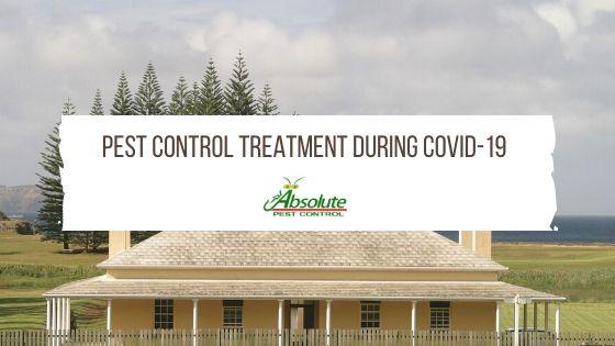 Pest Control Treatment During Covid-19 Quarantine