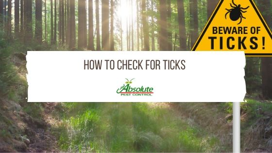 APC HOW TO CHECK FOR TICKS