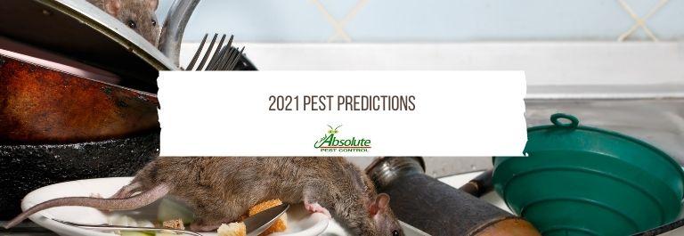 2021 Pest Predictions