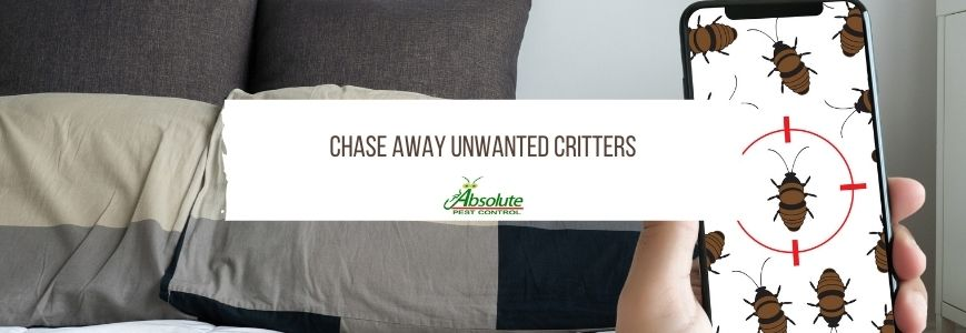 Chase Away Unwanted Critters from your Tennessee home