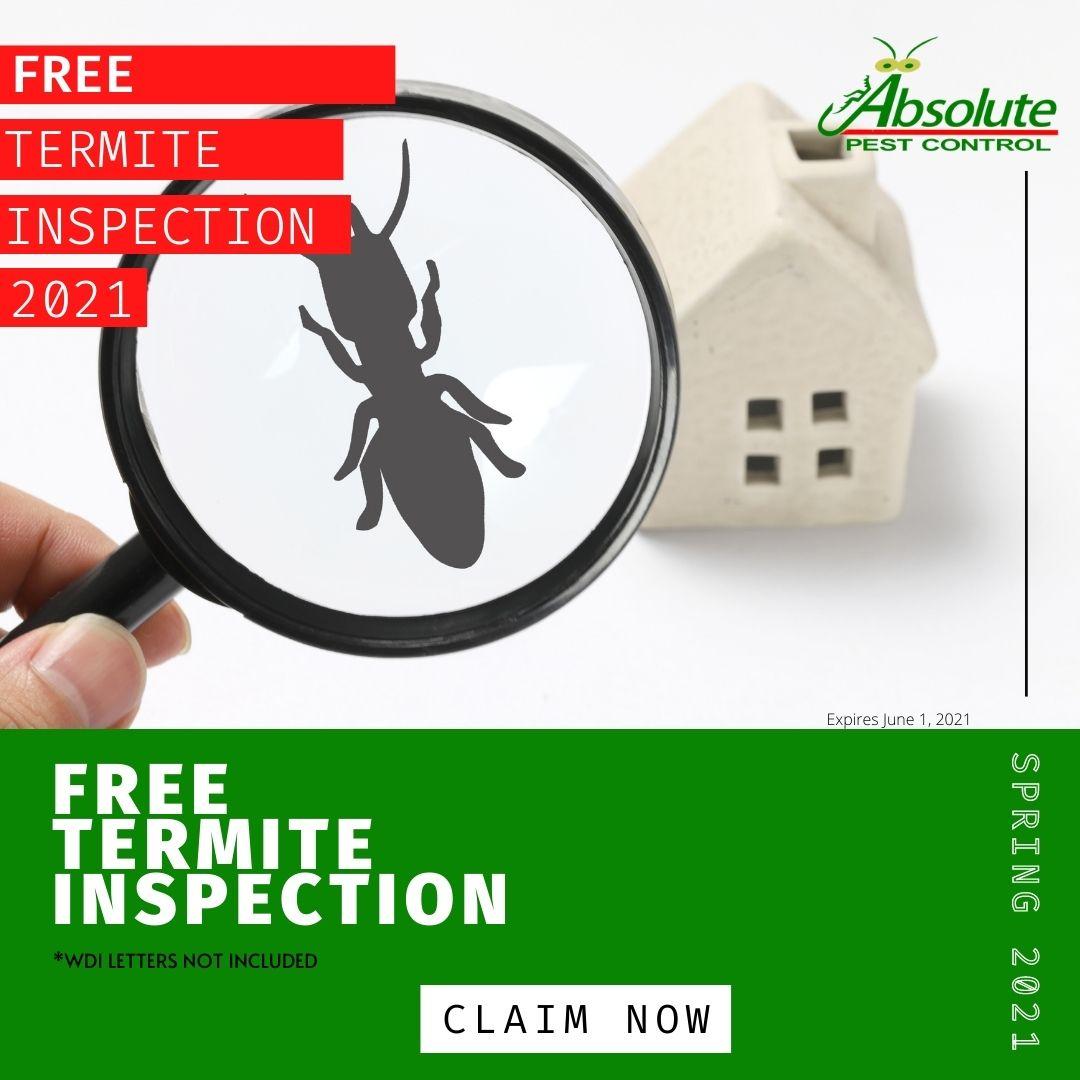 APC free termite inspection