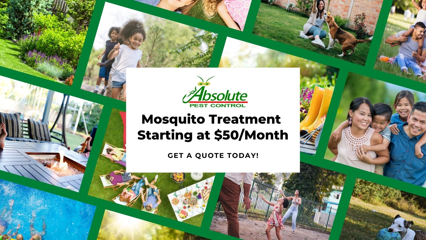 Mosquito get quote pic and button